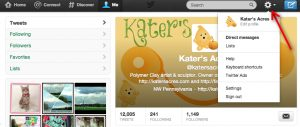 Twitter Tutorial - Edit Profile Option - A Twitter Tutorial by KatersAcres