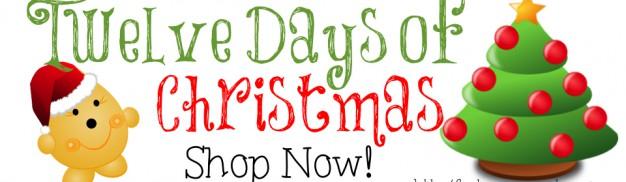 12 Days of Christmas Blog Slider
