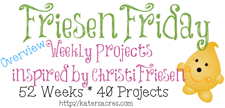 Friesen Fridays - An Overview of the Project at http://katersacres.com