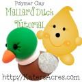 Mandarin Duck Tutorial by KatersAcres