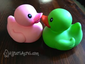 Rubber Duck Color Palette for Artistic Inspiration by KatersAcres