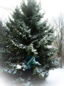 KatersAcres Winter 2015
