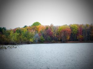 Pymatuning Lake in Pennsylvania in Autumn (Early October)