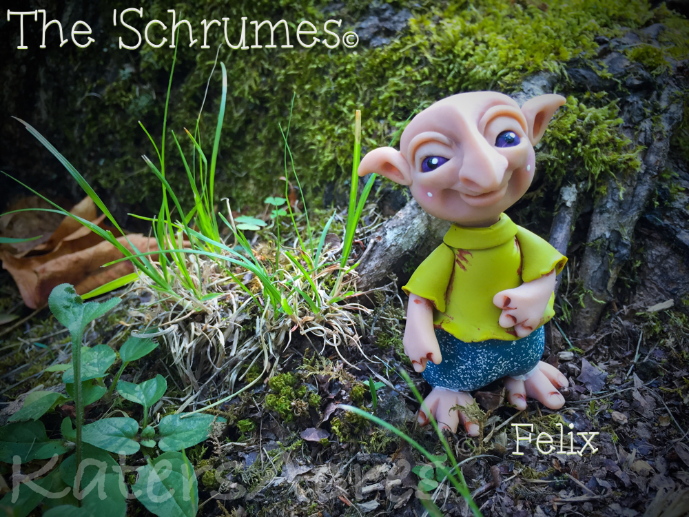 Felix 'Schrume Collectible by KatersAcres